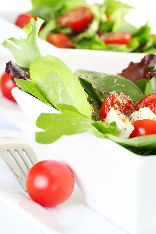 Frischer Salat lizenzfreies stockbild