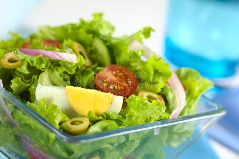 Frischer Salat mit Ei lizenzfreies stockfoto