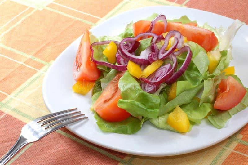 Frischer Salat mit Tomaten stockfotos