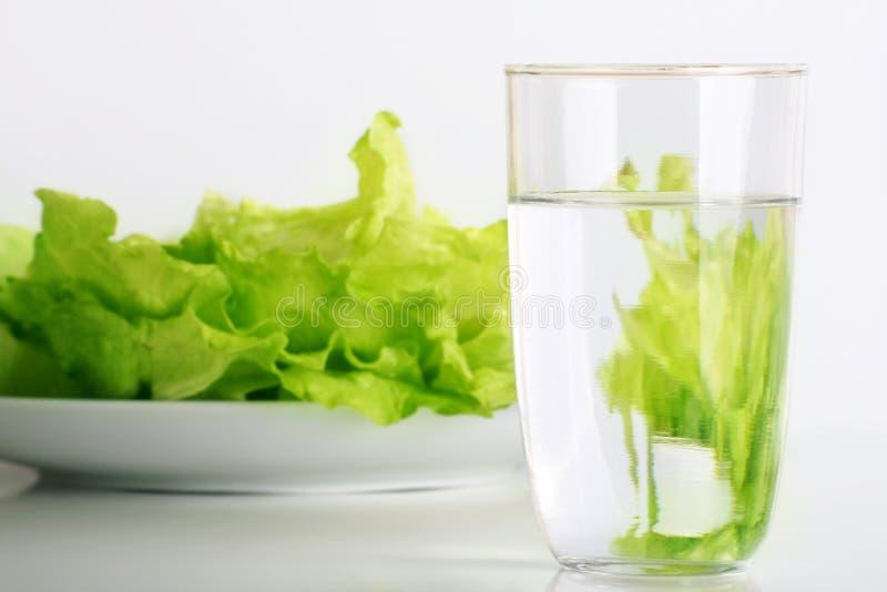 Frischer Salat und Wasser stockfoto
