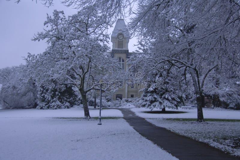 Frischer Schnee auf Campus stockfotos