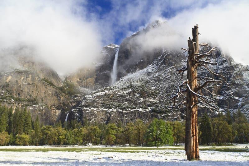 Frischer Schnee in Yosemite Falls stockfotos