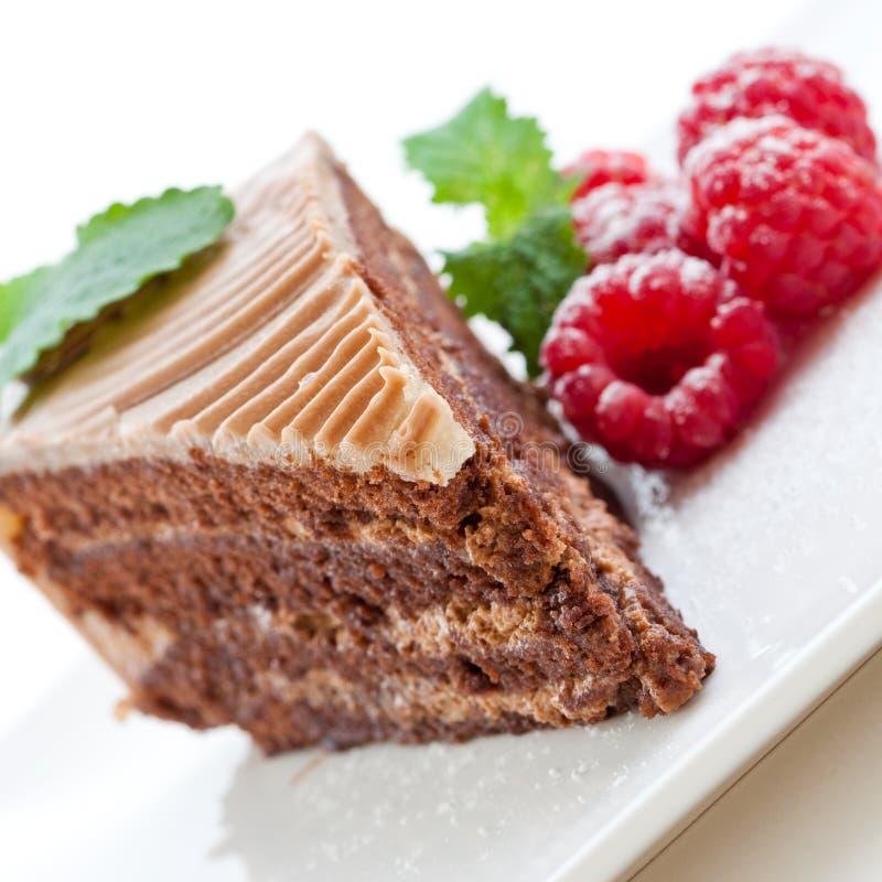 Frischer Schokoladenkuchen mit Himbeeren stockbild