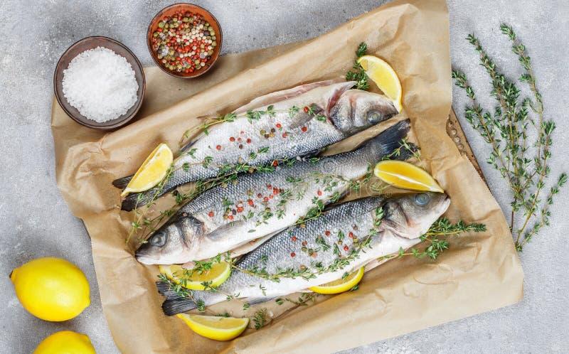 Frischer Seebarsch der rohen Fische lizenzfreie stockfotos