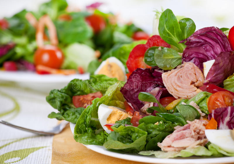 Frischer Thunfisch-Salat lizenzfreies stockbild