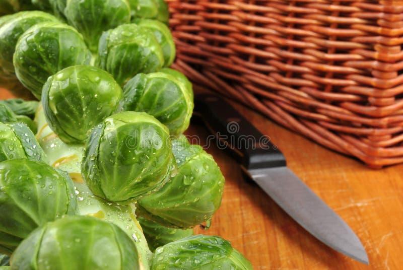 frischer und gesunder organischer Rosenkohl stockfotos