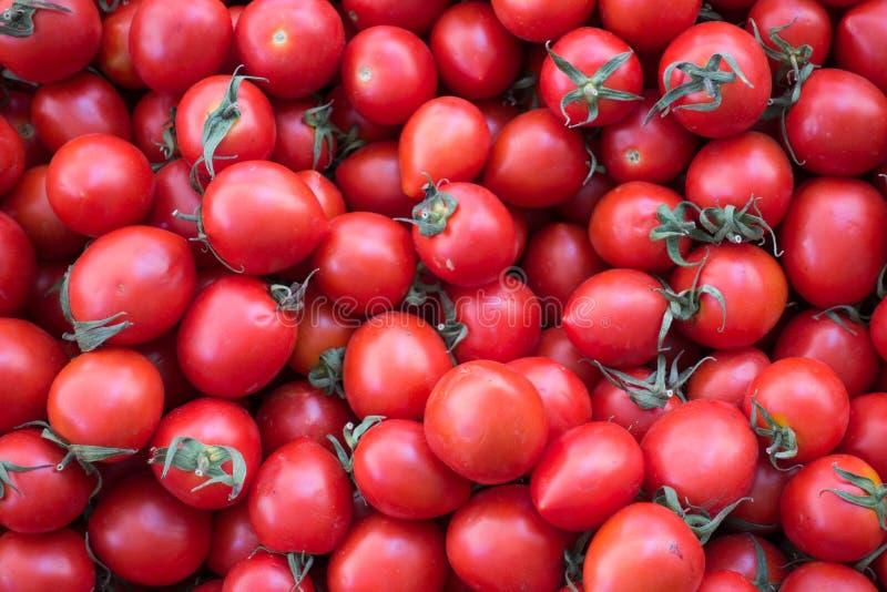Frischer und saftiger Cherry Tomatoes auf Stall für Verkauf lizenzfreies stockbild