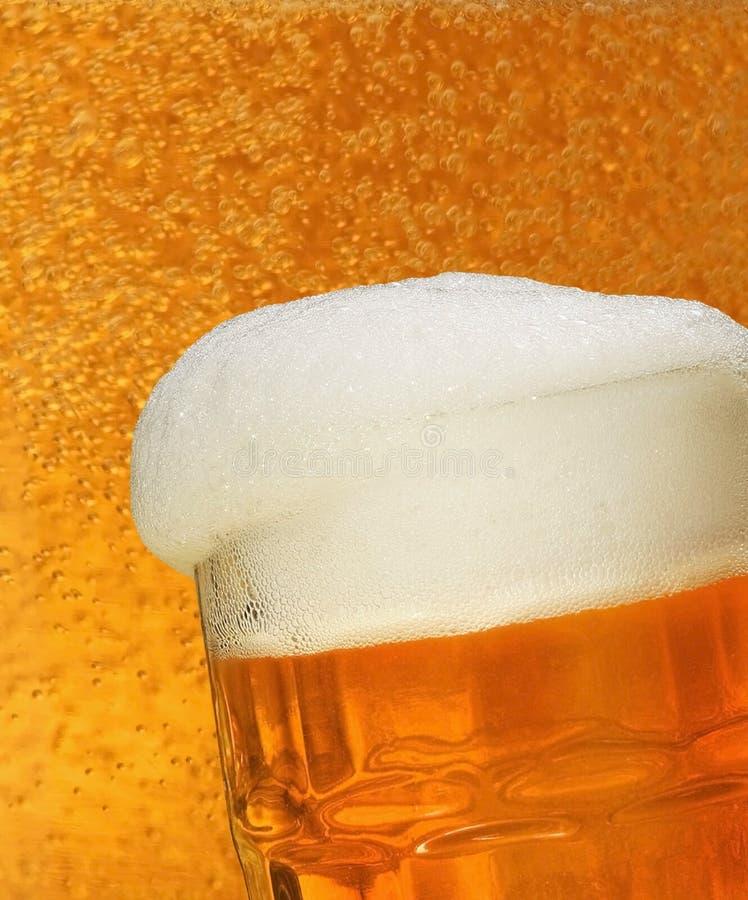 Frisches Bier lizenzfreies stockfoto