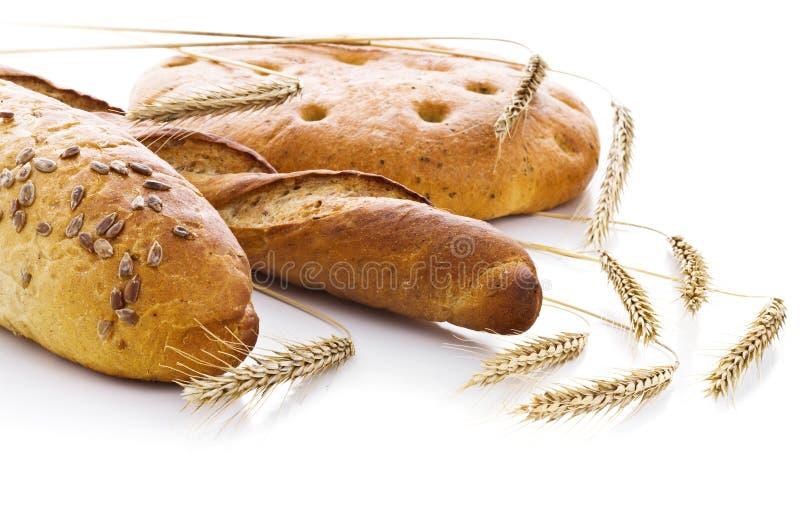 Frisches Brot mit den Ohren des Weizens stockfotografie
