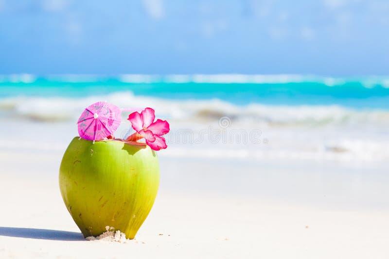 frisches cocktail der kokosnuss zwei auf tropischem strand mit stockbild bild von ozean. Black Bedroom Furniture Sets. Home Design Ideas