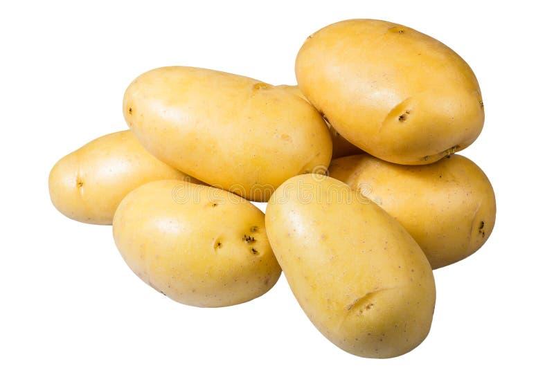 Frisches der weißen Kartoffeln ausgewählt lokalisiert stockfoto