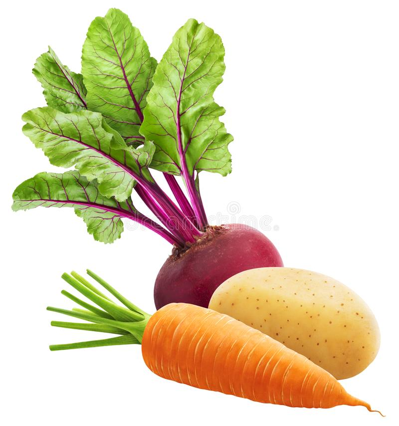 Frisches Gemüse, Haufen Karotten, Kartoffeln und Rüben, auf weißem Grund isoliert lizenzfreie stockfotografie