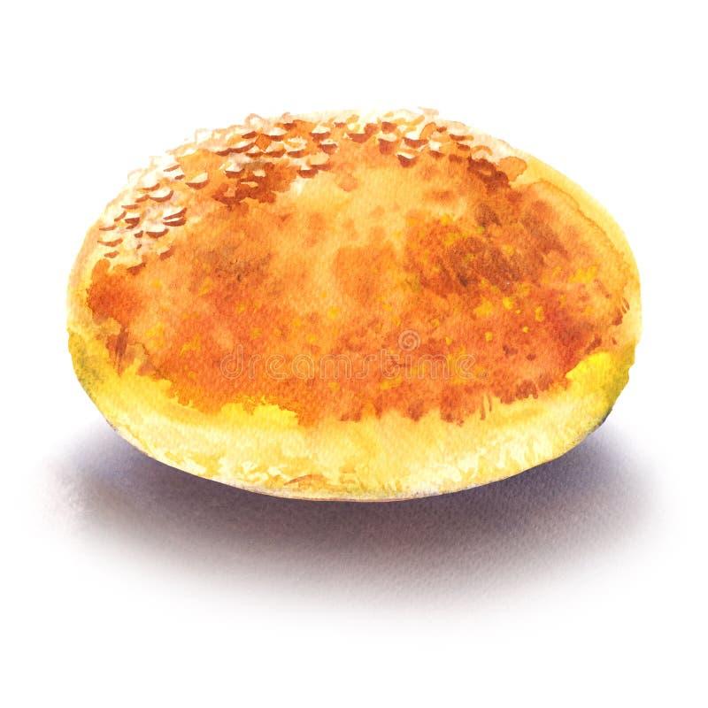Frisches geschmackvolles ganzes Hamburgerbrötchen mit Samen des indischen Sesams, Aquarellillustration auf Weiß stockfotos