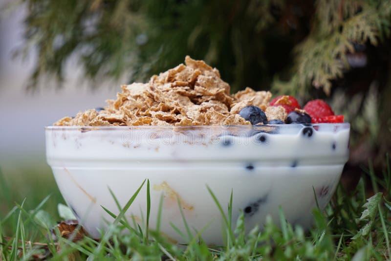 Frisches gesundes Frühstück stockfotos
