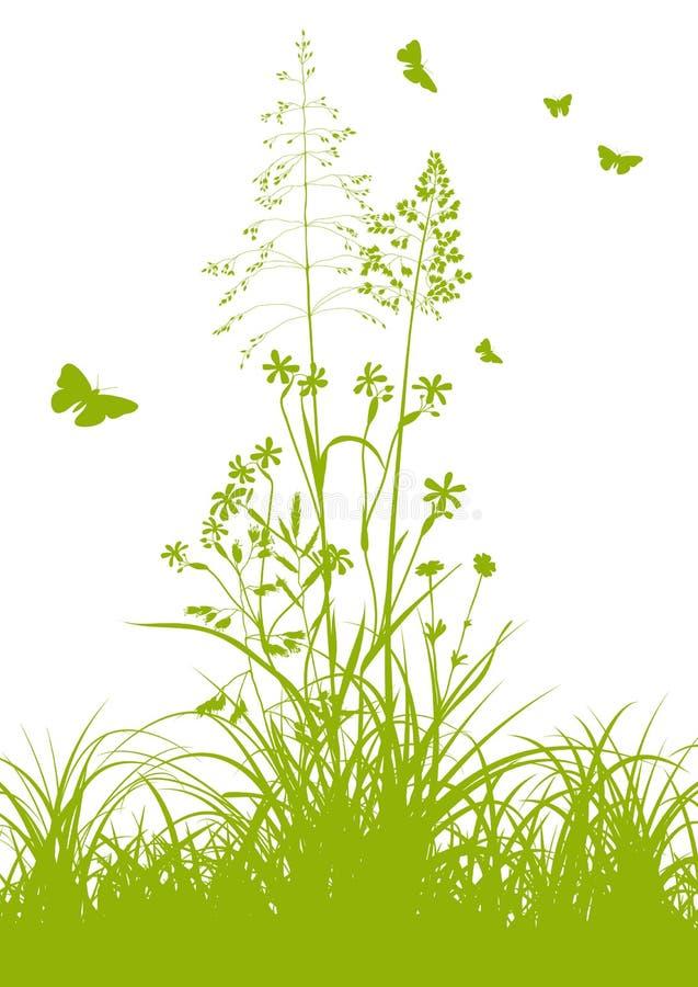 Frisches grünes Gras mit Weide und Schmetterlingen vektor abbildung