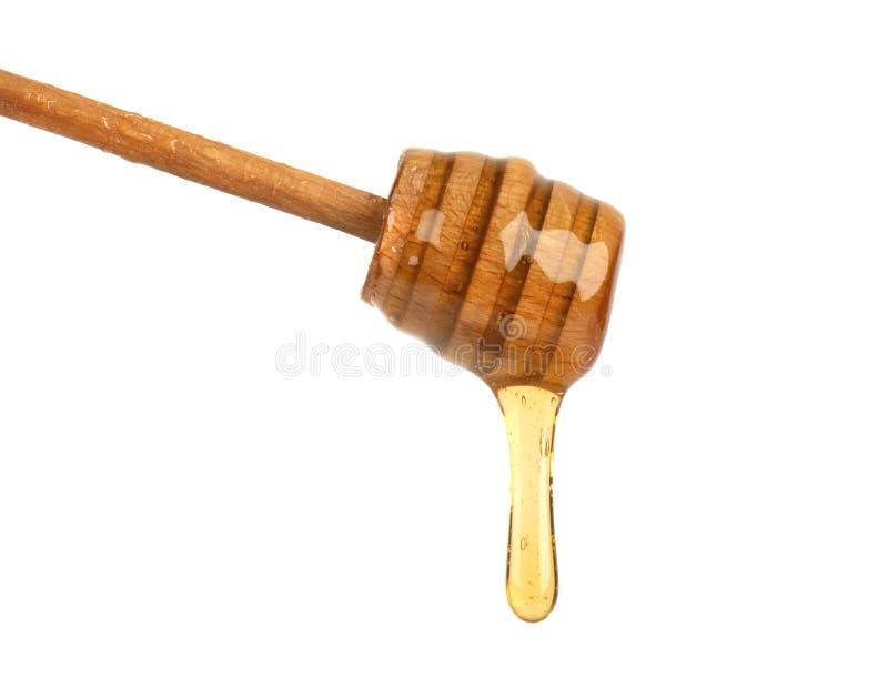 Frisches Honigbratenfett von einem Honigschöpflöffel lokalisiert auf weißem Hintergrund, Bienenprodukte durch organische natürlic lizenzfreies stockbild