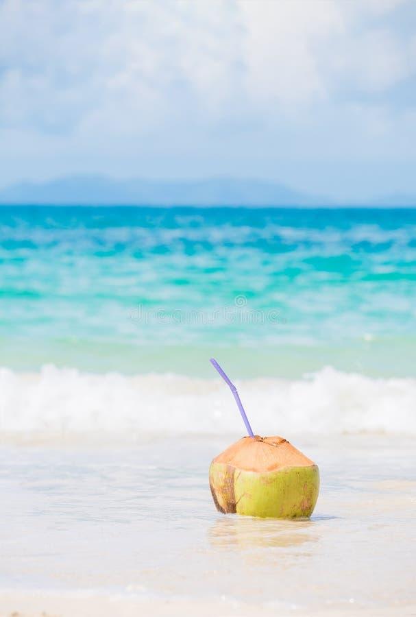 Frisches Kokosnusscocktail auf tropischem Strand stockbild