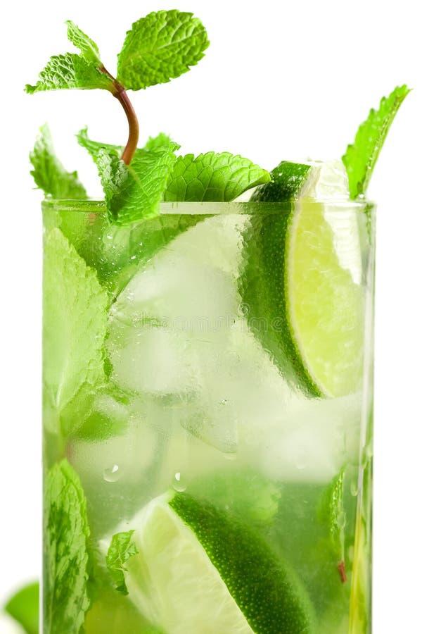 Frisches mojito Cocktail stockfoto