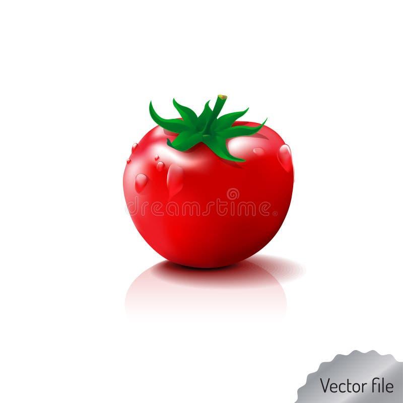 Frisches Obst und Gemüse Illustration vektor abbildung
