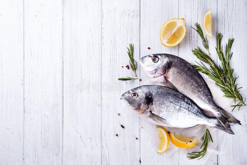 Frisches rohe Fische dorado lizenzfreie stockbilder