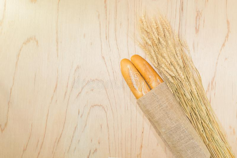 Frisches rustikales Brot stockfotografie