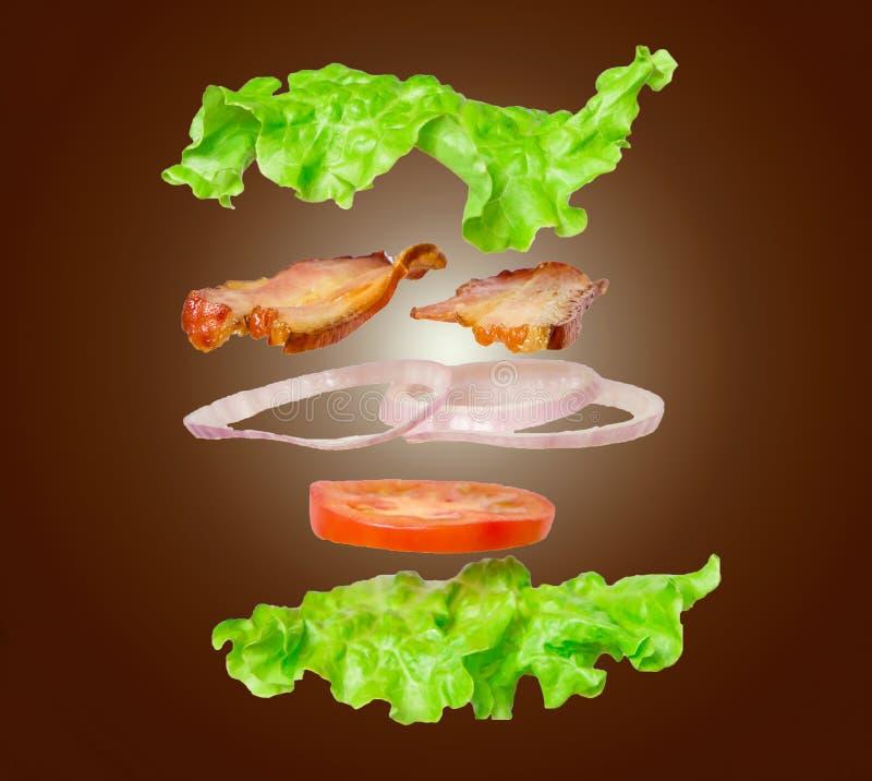 Frisches Sandwich im Salat verlässt mit den Fliegenbestandteilen, die auf dunklem Hintergrund lokalisiert werden stockfotos