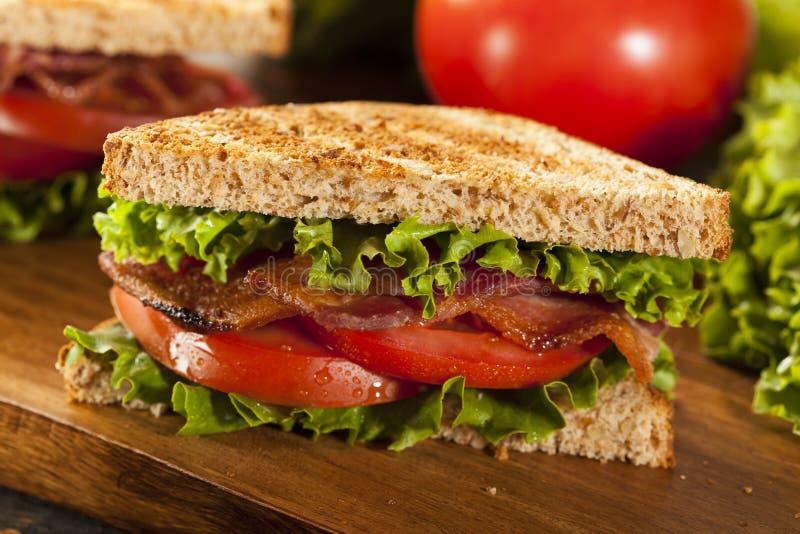 Frisches selbst gemachtes BLT-Sandwich stockbild