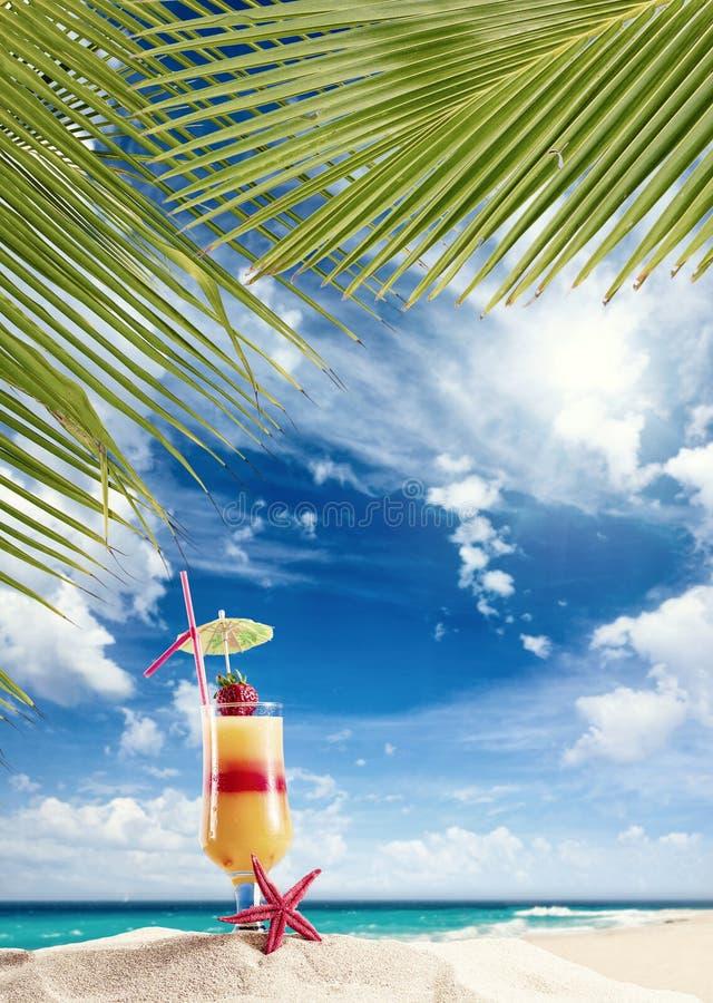 Frisches tropisches Cocktail auf sonnigem Strand in Malediven lizenzfreies stockbild