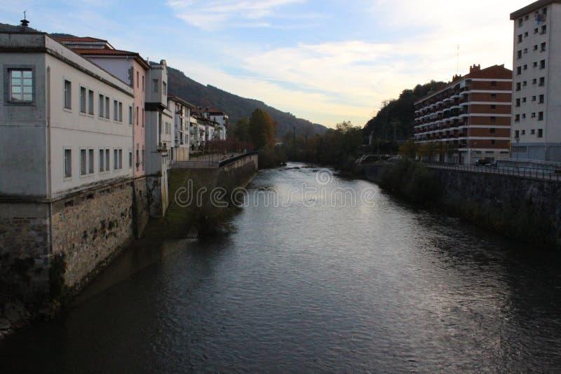 Frisches und kaltes Wasser von europäischem Fluss des langen Schwanzes Wald stockfotografie