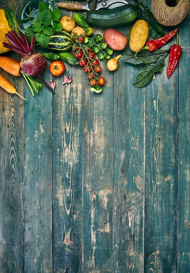 Frischgemüse der Ernte auf altem hölzernem Brett stockbild