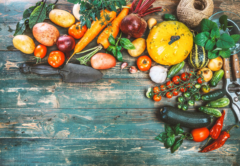 Frischgemüse der Ernte auf altem hölzernem Brett lizenzfreies stockfoto