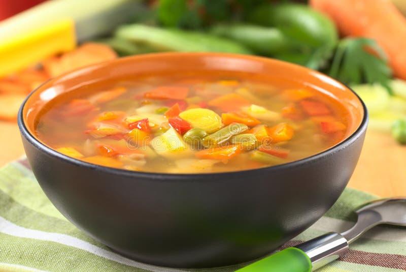 Frischgemüse-Suppe stockfotos