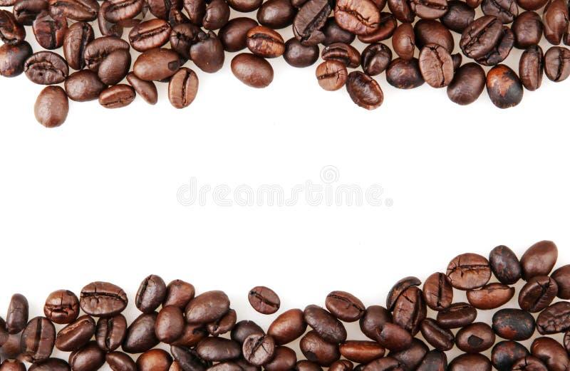 Frischgeröstete Kaffeebohnen, isoliert auf weißem Grund lizenzfreies stockfoto