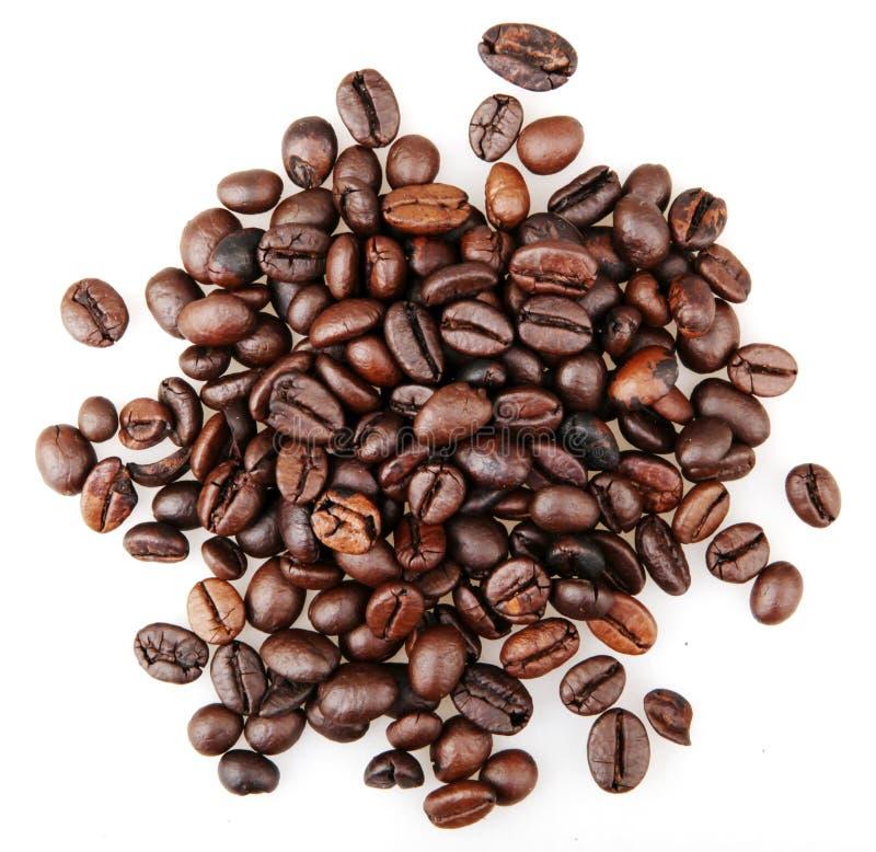 Frischgeröstete Kaffeebohnen, isoliert auf weißem Grund stockfoto