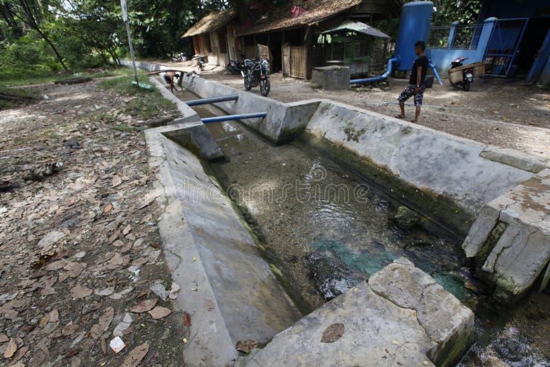 Frischwasserfrühlinge stockfoto