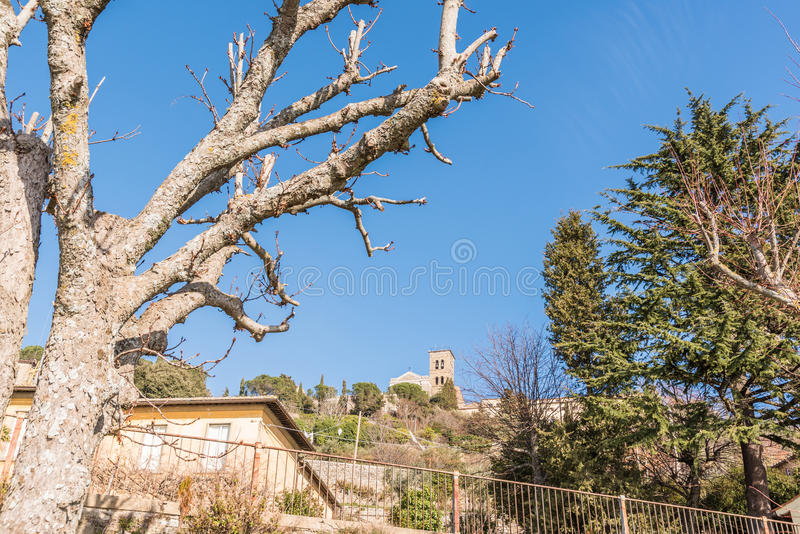Fristad av Santa Margherita i Cortona royaltyfri bild