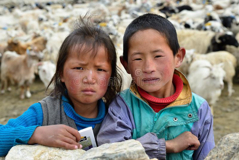 Fristaden Changpaen är ettnomad- tibetant folk royaltyfri bild