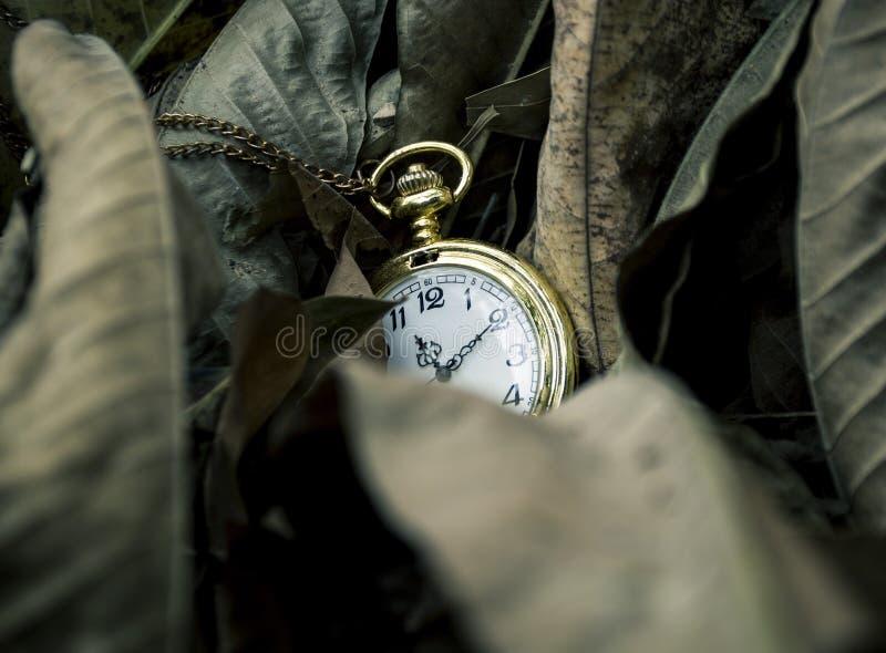 Fristenkonzept-Taschenuhr und trocknen Blätter stockfotos