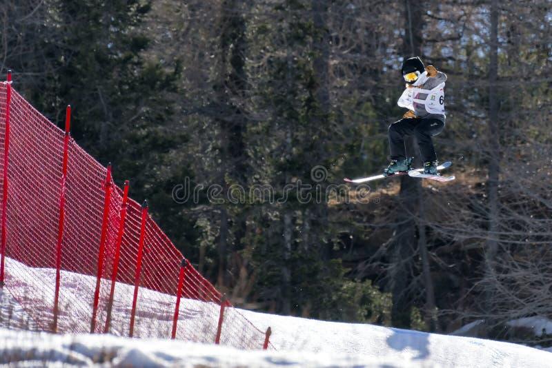 Fristil skidar FIS Junior World Chanpionship, idrottsman nen i slopestyle royaltyfri bild