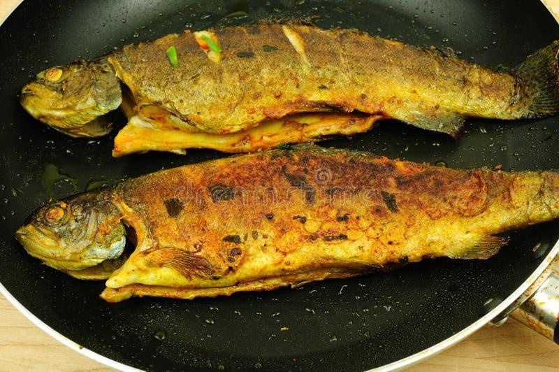 Fritada de pescados picante imagen de archivo