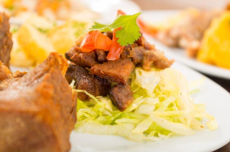 Fritada a fait frire la nourriture traditionnelle d'ecuadorian de porc images libres de droits