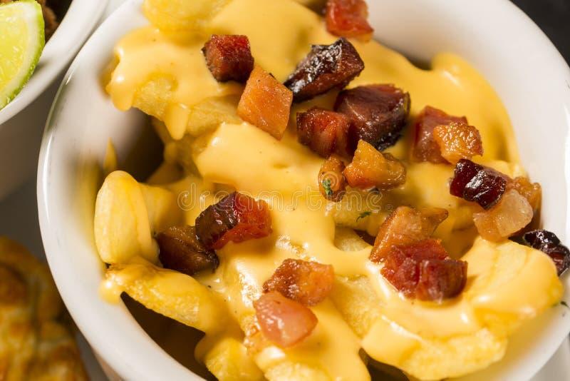 Fritadas com queijo Cheddar e bacon fotos de stock