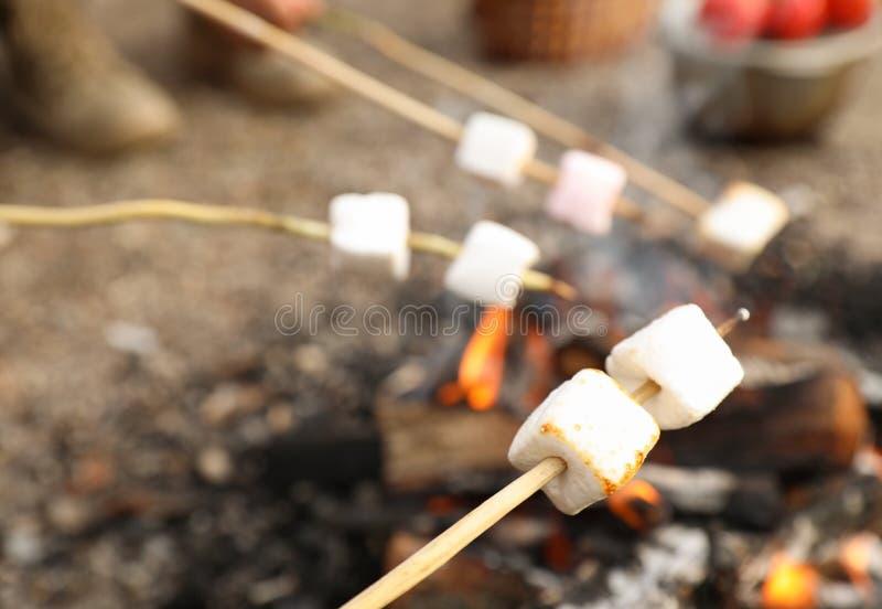 Fritando o marshmallow na fogueira fora foto de stock royalty free