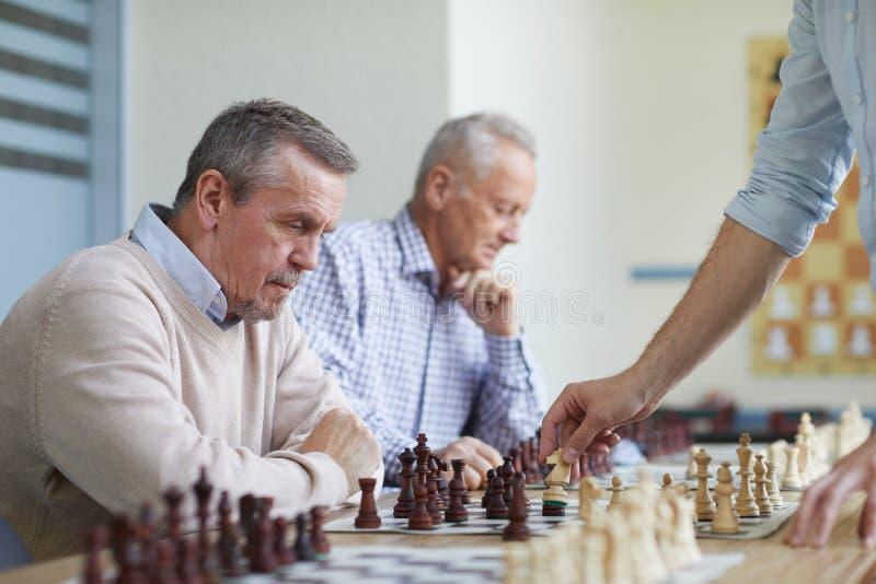 Fritid på schackklubban royaltyfri fotografi