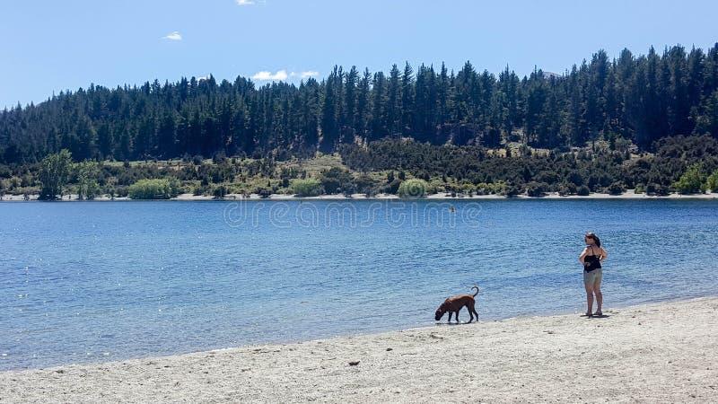 Fritidbild av en kvinna och hennes husdjurhund som tycker om härlig dag ut längs sjön royaltyfri fotografi