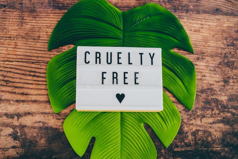 Fritt meddelande för grymhet på lightbox med bladet och trä, begrepp av strikt vegetarianetik arkivbilder