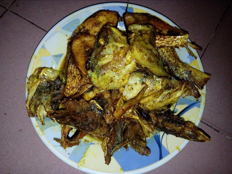 frittura di pesce, pesce, pesce delle hilsa, pesce delizioso, hilsha di padma fotografia stock
