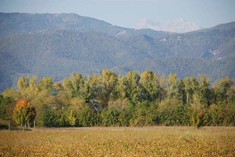 Download Friuli Field In Autumn Royalty Free Stock Images - Image: 7333449