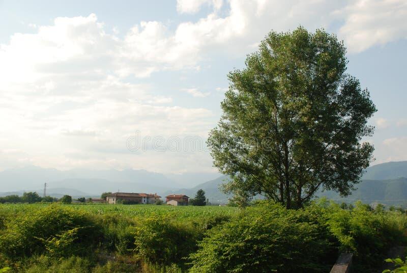 Friuli rural 1 fotografía de archivo