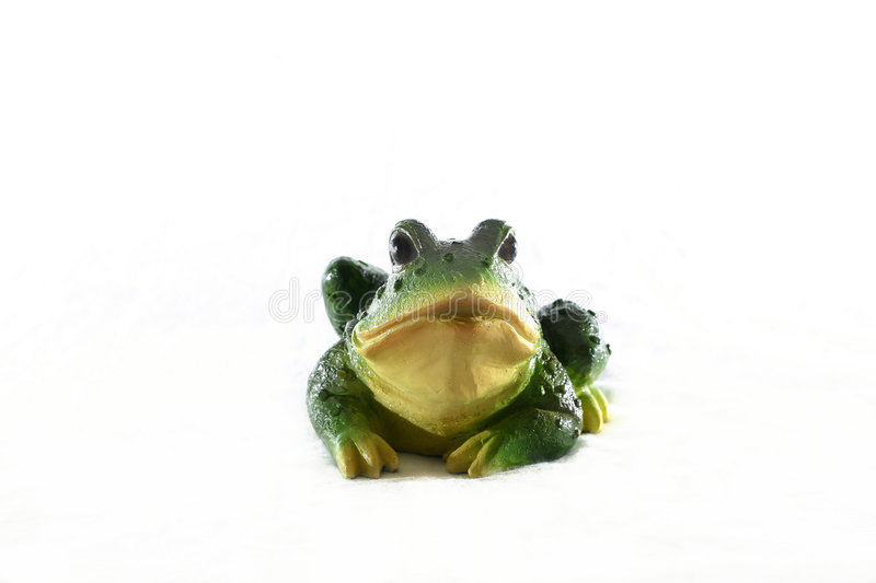 Download Frog stock photo. Image of reptile, gardening, green, frogs - 46026
